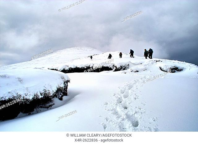 Hikers making their way through fresh snowfall to the summit of Galtymore, Galtee Mountains, County Tipperary, Ireland