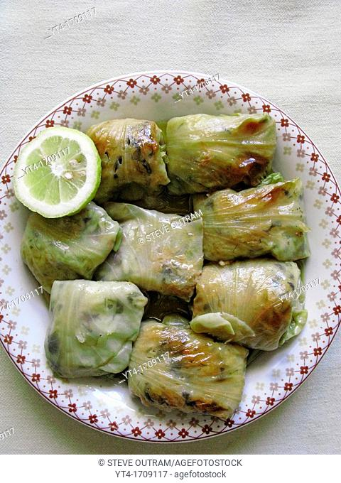 Greek Cuisine  Stuffed Cabbage Leaves Dolma
