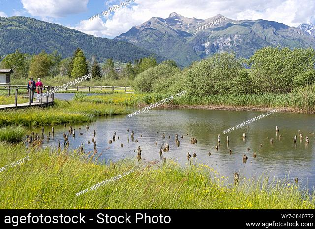 little lake and peat bog at the natural reserve wit pile dwelling remains, fiave', italy