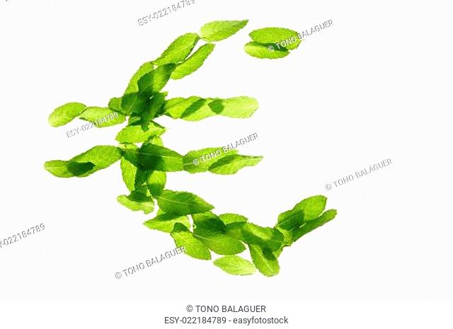 Euro currency symbol made of basil mint leaves