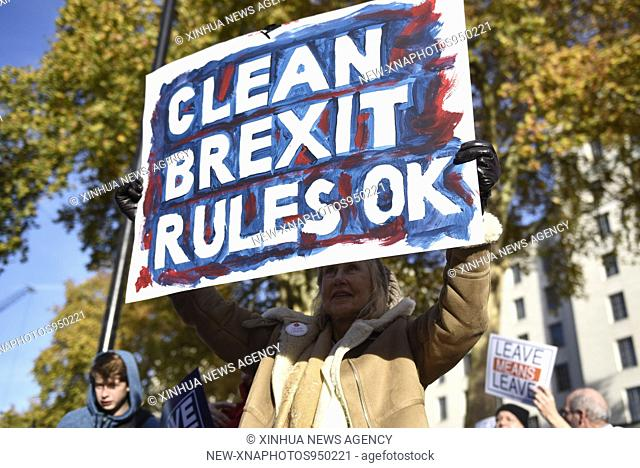 (181114) -- LONDON, Nov. 14, 2018 (Xinhua) -- A pro-Brexit demonstrator holds a placard on Whitehall outside Downing Street in London, Britain, on Nov