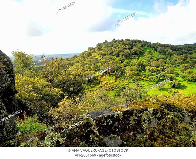 Sierra Valdemorales, Cáceres province, Extremadura, Spain