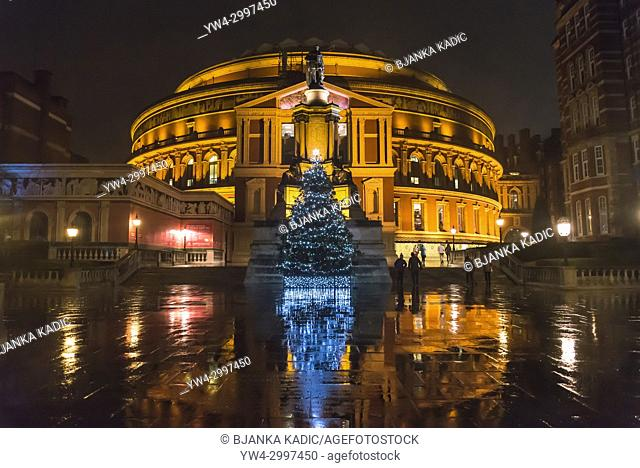Christmas tree in front of the Royal Albert Hall at night, South Kensington, London, England, UK