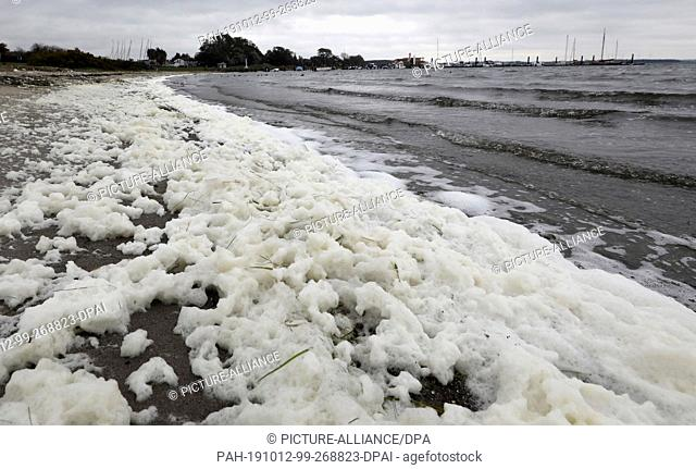 11 October 2019, Mecklenburg-Western Pomerania, Rerik: Wind and waves have created a foam carpet on the shore of the Salzhaff