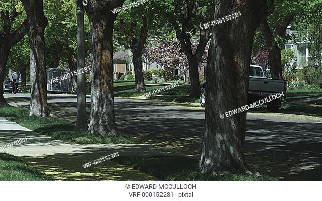 PAN, MS, boy riding his bike down a tree lined suburban street
