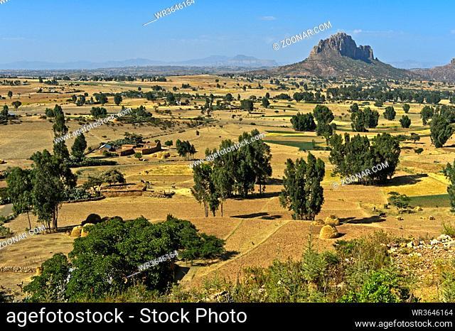 Landschaft mit erodiertem Tafelberg, Amba, im Hochland von Abessinien, Tigray, Äthiopien / Landscape with eroded flat-topped mountain, Amba