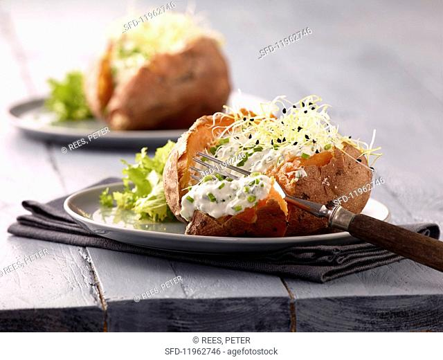 Stuffed sweet potatoes with chive sour cream and bean sprouts