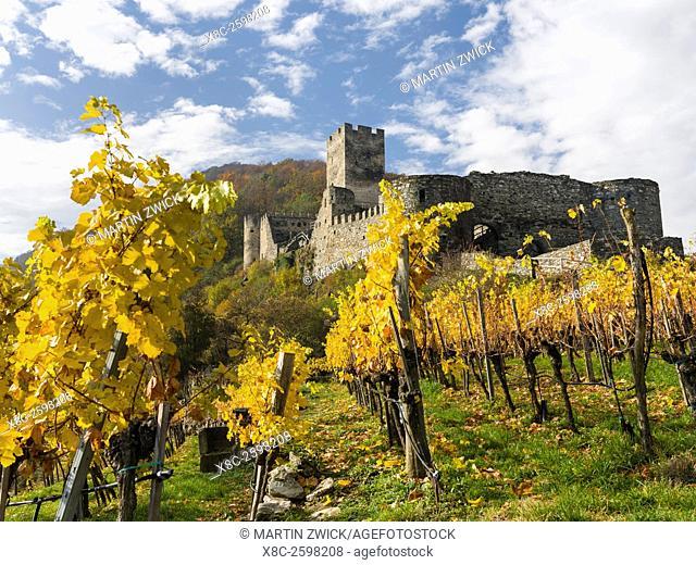Castle ruin Hinterhaus high above the village Spitz in the Wachau. The Wachau is a famous vineyard and listed as Wachau Cultural Landscape as UNESCO World...