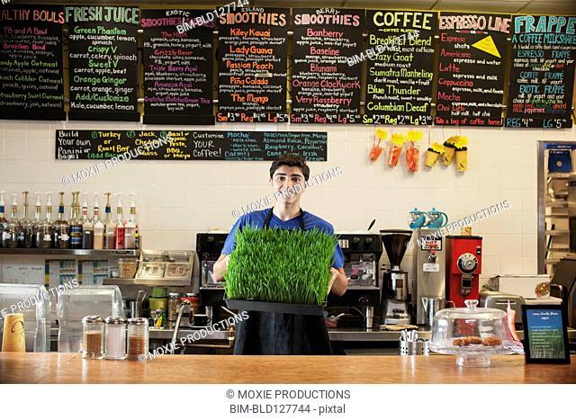 Hispanic teenage boy holding fresh wheatgrass in cafe