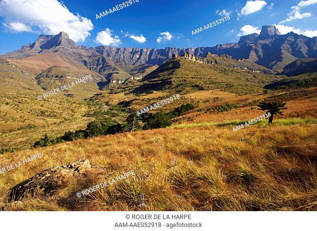 The Amphitheatre. Royal Natal National Park. uKhahlamba Drakensberg Park. KwaZulu Natal. South Africa
