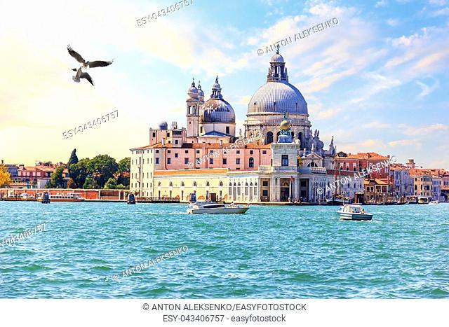 Venice, view of the Basilica Santa Maria della Salute