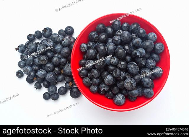 Black cranberry (Vaccinium uliginosum) is native to temperate regions of the northern hemisphere, low in the Arctic, and at high altitudes south of the Pyrenees