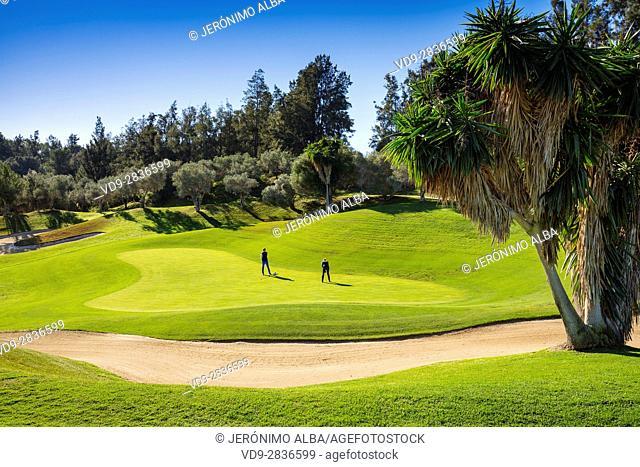 Santa clara golf course, Marbella. Costa del Sol, Malaga province. Andalusia Southern Spain. Europe