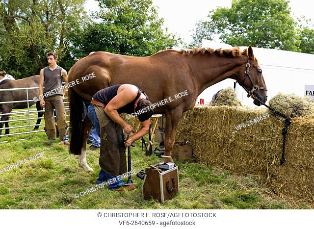 Demonstration of shoeing a horse at Frampton Country Fair, Frampton on Severn, Gloucestershire, UK