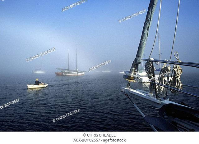 Canoe Cove, near Sidney - man in dinghy rows ashore in mist, Vancouver Island, British Columbia, Canada