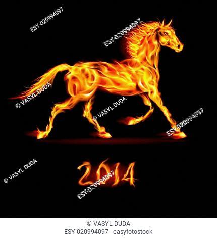 Fair-Horse-Run