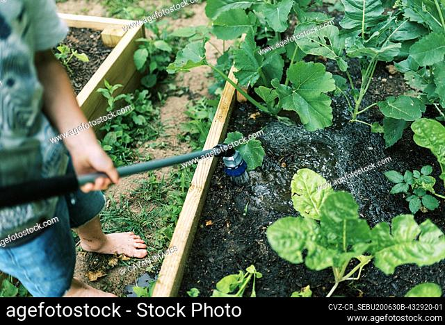 A little boy doing his chore of watering the vegetable gardens