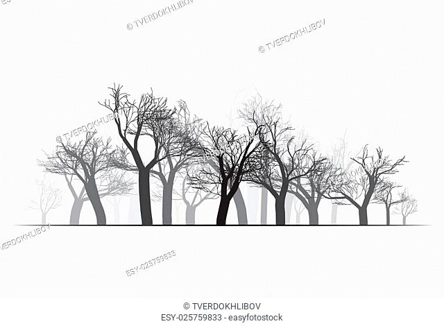 Wide Forest Background - vector illustration. Black on white
