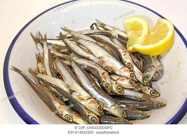 dish with anchovies and two slices of lemon