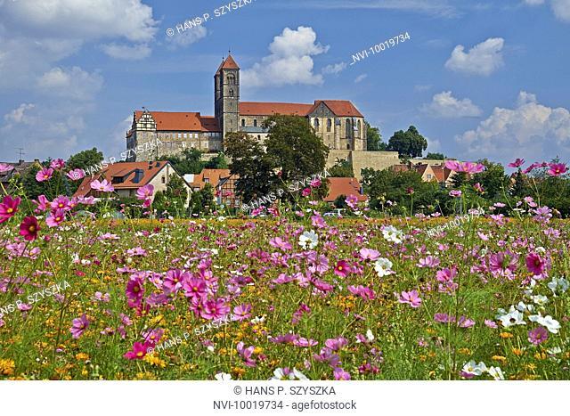 Castle with St. Servatius collegiate church in Quedlinburg, Saxony-Anhalt, Germany