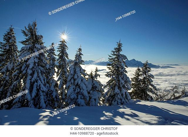 View from Rigi in winter in direction Pilatus in Central Switzerland
