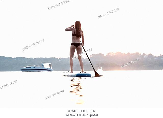 Back view of young woman stand up paddle-boarding at sunset, Lake Starnberg, Germany