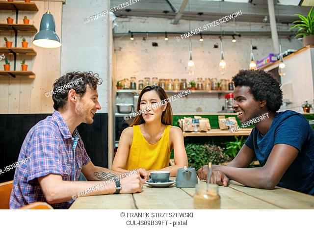 Woman and male friends chatting together in cafe
