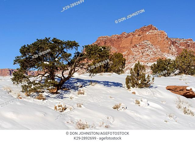 Recent snow in the high desert, Capitol Reef National Park, Utah, USA