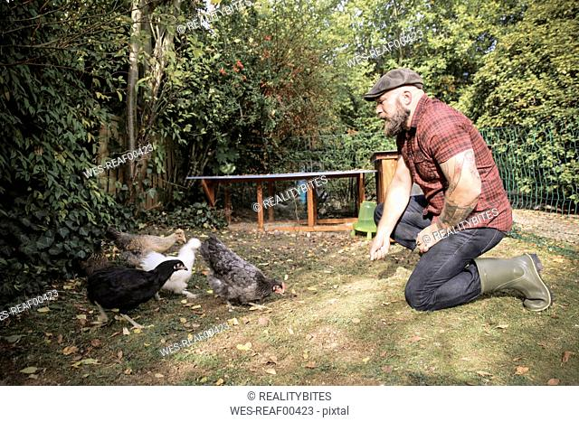 Man in his own garden, man feeding free range chickens