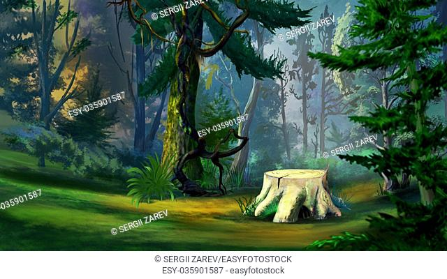 Digital Painting, Illustration of a old tree stump in the spruce forest in Realistic Cartoon Style