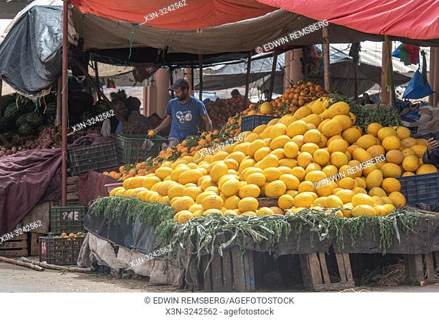 Canary melons stacked high on stall at souk (outdoor market) while man browses, Tighmert Oasis, Morocco