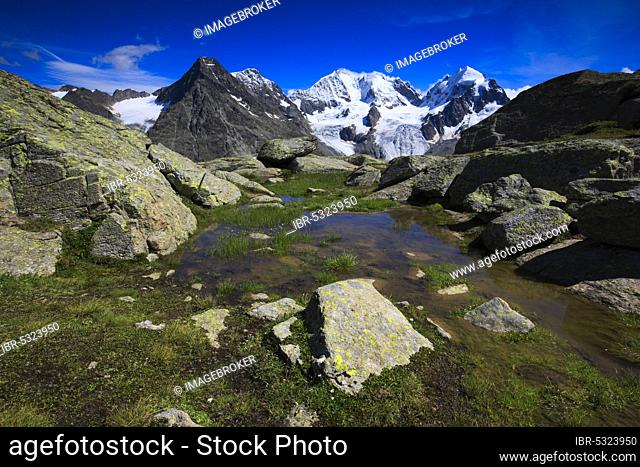 Piz Tschierva, 3546 m, Piz Bernina, 4049 m, Biancograt, Piz Roseg, 3937 m, view from Fuorcla Surlej, Graubuenden, Switzerland, Europe