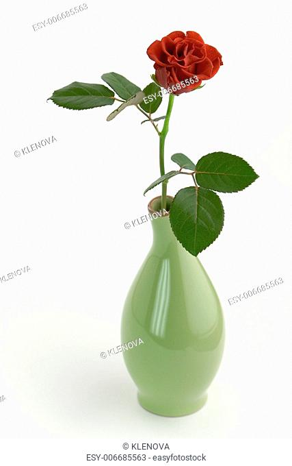 Red rose in a green vase on white background