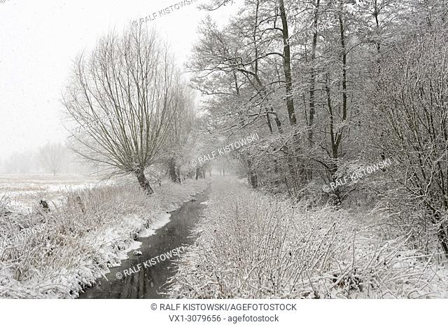 Onset of winter, wide open natural wetland area, old rhine sling, near Duesseldorf, Germany