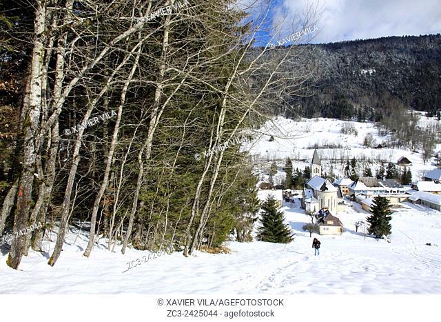Ski resort with forest of Saint Hugues en Chartreuse, Alps, Isere, Rhone Alpes, France
