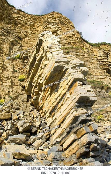 Rockfall, layered rock formations, coast, Llantwit Major Beach, Wales, United Kingdom, Europe