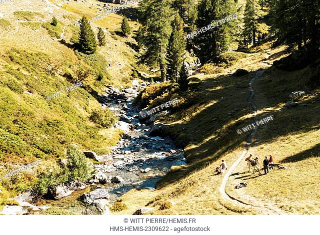 France, Hautes Alpes, Claree valley, Nevache, Claree torrent