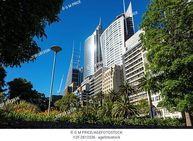 gardens and high rise buildings along Macquarie Street, Sydney
