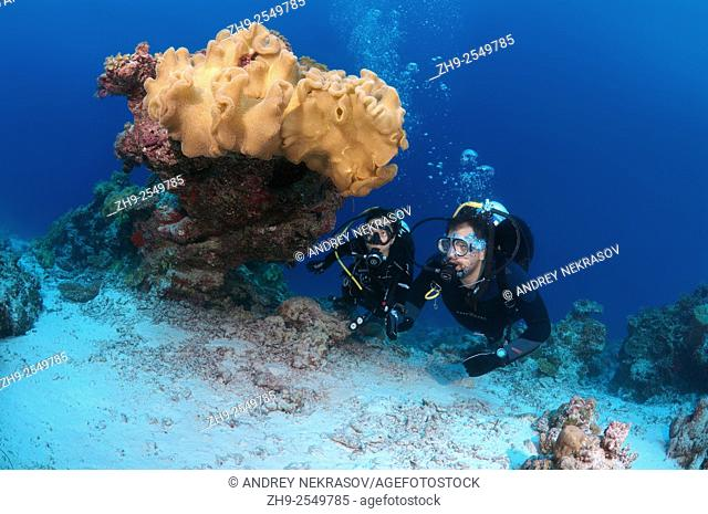 Young couple looking at the coral divers, Indian Ocean, Maldives