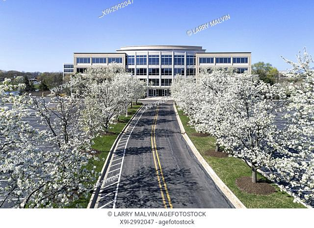 Office building headquarters in office park during spring with flowering trees