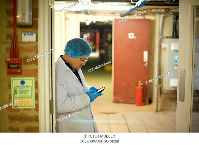 Worker wearing hair and latex gloves leaning against doorway using smartphone