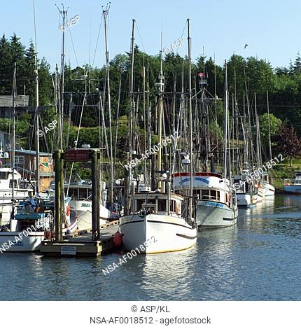 Sailboats docked at pier, Vancouver Island, Canada