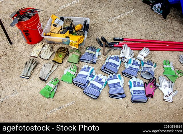 Gloves and gardening tools are laid out for the weeding group at a Girl Scout nature demonstration in Newport Beach, CA