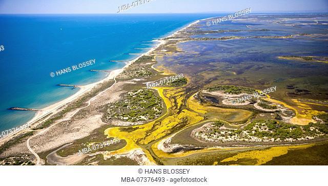 Mediterranean coast west of Saintes-Maries-de-la-Mer, brackish water area of Etang de Melégal, Camargue, Bouches-du-Rhône department, France