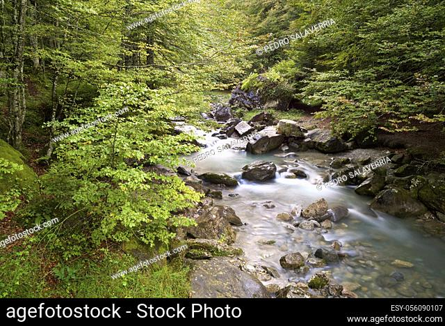 River in Sansanet forest, Aspe Valley, Pyrenees in France