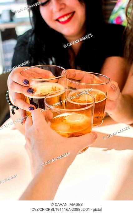 Group of friends are toasting with beer in a terrace of a pub. Lifestyle, leisure