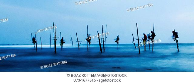 Stilt fishermen perched on their poles during the early evening hours in Midigama, Sri Lanka