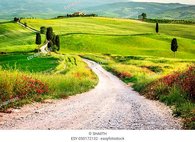 Dirt road and green field in Tuscany