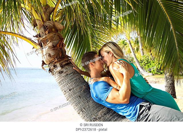 A couple lays on the trunk of a palm tree at the water's edge; Honolulu, Hawaii, United States of America