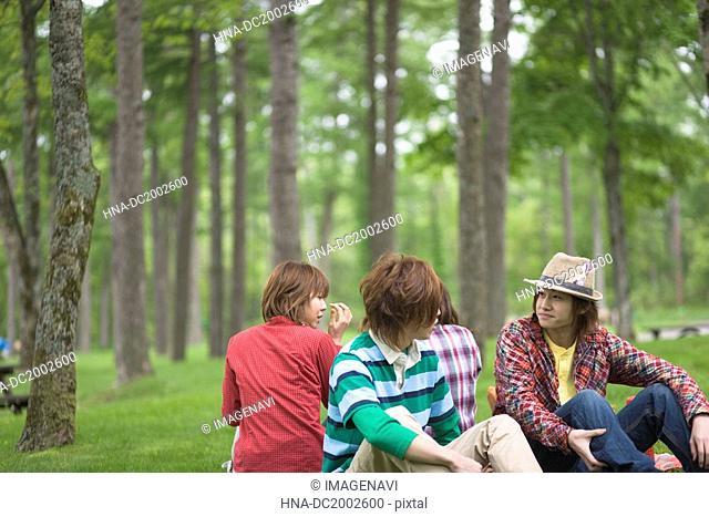 Men and Women Having a Picnic